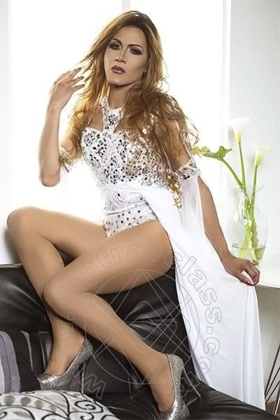 Paloma Tx  BENEVENTO 3803757744